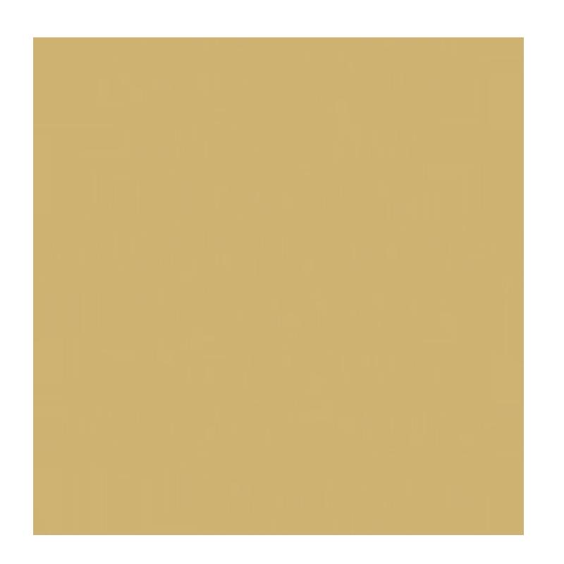 GeneSimmonsMoneyBags.com